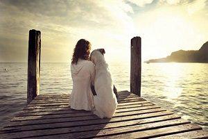 Affronter la perte d'un animal de compagnie